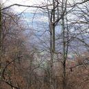 približan pogled na stari log