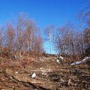 vršni del Poldanovca, vzpon na razgledni rob pod vrhom
