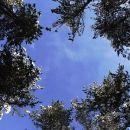 del dopoldneva še modro nebo