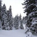 v zimsko pravljico