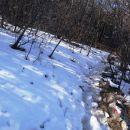 v senčnih legah še nekaj snega
