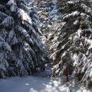 skozi zimsko pravljico nazaj v dolino