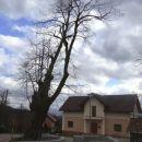 v vasi je nekaj zelo lepo obnovljenih starih hiš