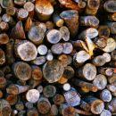 drva (hdr)