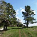 na travnikih pod debelim vrhom