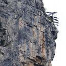 približan detajl stene
