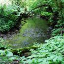 potok, ki mu je ime Potok