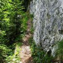 zanimiv del steze pri obirski planini