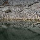 odsevi v črnem jezeru