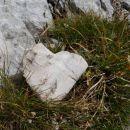 nagrada v obliki kamnitega srčka na koncu sitnega dela poti