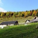 lešanska planina, nad njo macesnov gozd, ki že dobiva rjavo-zlate odtenke