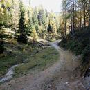 alpe adria trail gre naravnost, medve levo mimo lovske koče