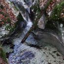 ob mošćenićkem potoku navzgor