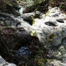 skalne kadice z vodo