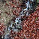 ne vem, ali je to stalni potok, ali je nastane le ob deževju?