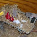 na starem kmečkem vozičku