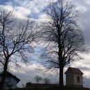 tale je lepo umeščena na privzdignjeno mesto, poleg drevesa...
