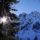 prihod iz senčnega gozda na zimsko sonce