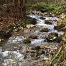 potok grahovica