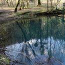odsevi v smaragdni vodi izvira
