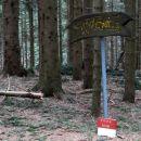 vrh sredi gozda