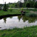 mimo ribnika v komnu