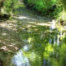 .. in ob potoku naprej