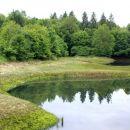 ena številni vodnih površin na polju