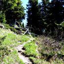 še čez pašno ograjo in pridemo iz gozda na prostrane planjave vršnega dela
