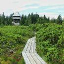 razgledni stolp nad lovrenškimi jezeri