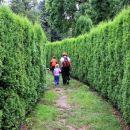 zeleni labirint