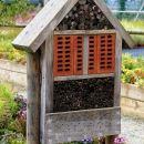 hotel za žuželke