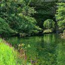 pogled na veliki naravni most s travnika ob reki rak