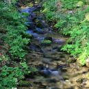 potoček v gozdu ob poti k drugemu slapu