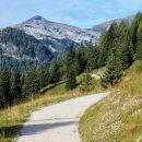 cesta na planino krni dol, v ozadju vrh grubje