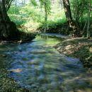 skrivnostno vzdušje ob potoku...