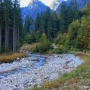 ob potoku proti zatrepu doline