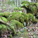 staro zidovje vzdolž gozdne steze ...