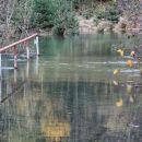 most pod vodo