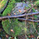 mlinski kamen