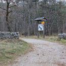 vhod v gozd bazzoni...