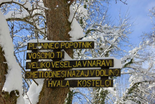 Pod Planinsko steno-8.2.2015 - foto