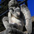 prijazni angel...
