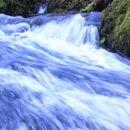 pa spet mirtoviški potok, tako divji, da ga je težko ujeti v objektiv...