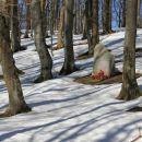 partizanski spomenik v gozdu