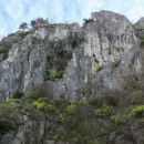 divje skalovje...