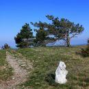 prečkanje markirane steze iz Prešnice na Slavnik