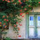 zapuščena hiša v fari