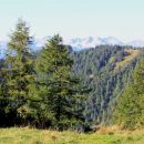 na sedlu nad plesiščem se odpre pogled na spodnje bohinjske gore