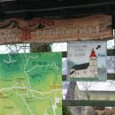 odcep gozdne ceste v lohači